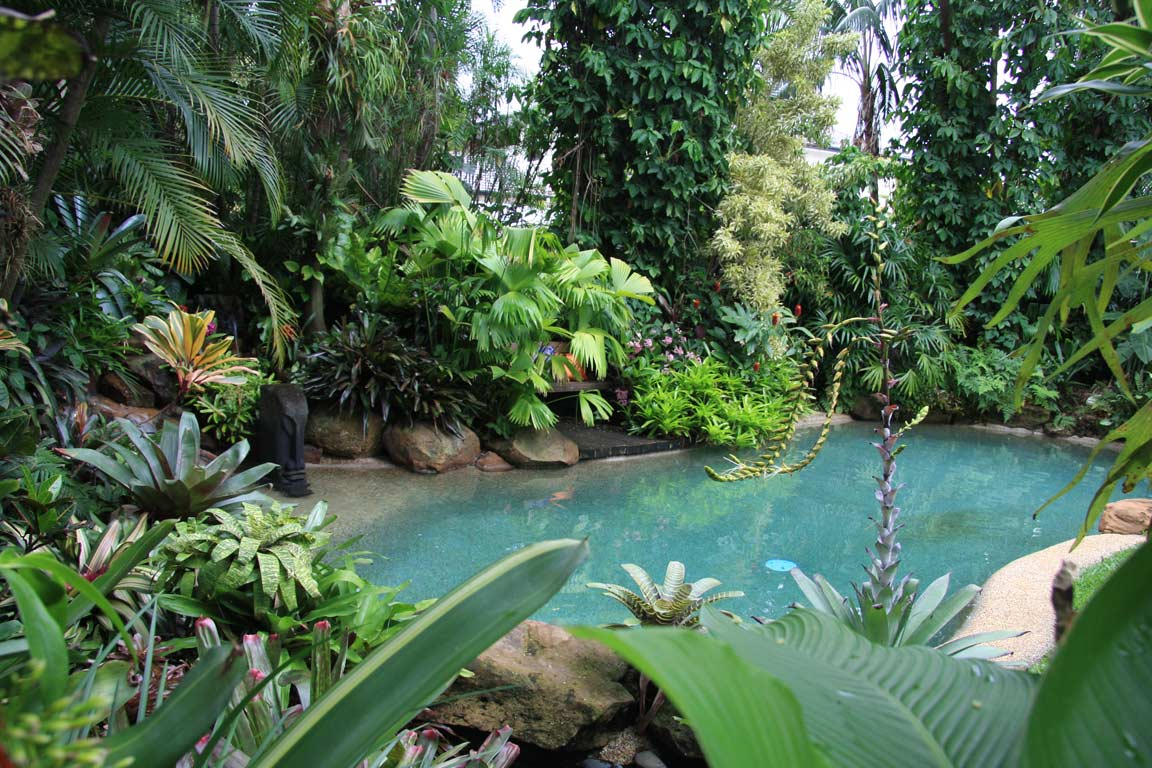 Tropical garden image gallery dennis hundscheidt for Tropical landscape
