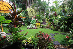 Australia 39 s finest private tropical garden for Qld garden design ideas